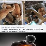 Cat Island Evacuated